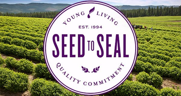 Less Chemical Life with Young Living